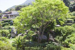 Giardino Botanico Hotel Cernia