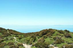 Mare e Natura Isola d'Elba